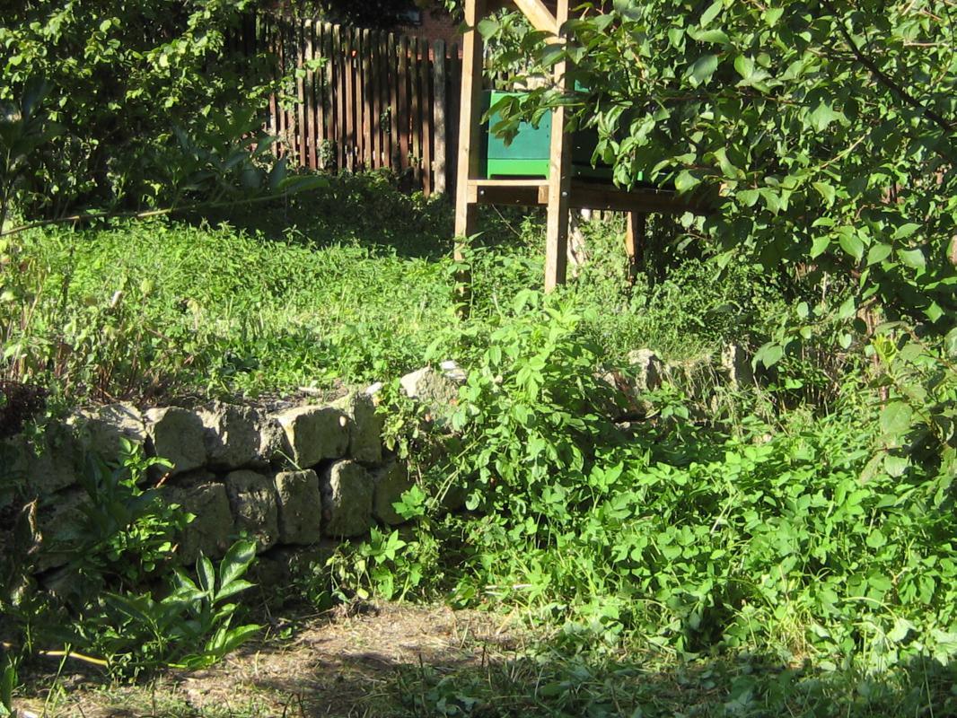 Bienenkästen,  Trockenmauer -  wieder sichtbar.